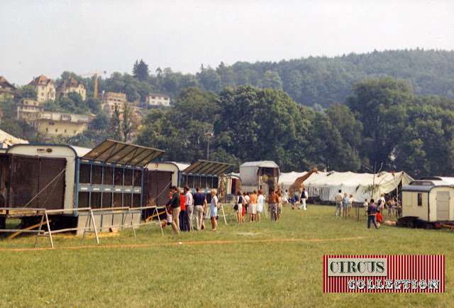 Zoo du Cirque National Suisse Knie  1970