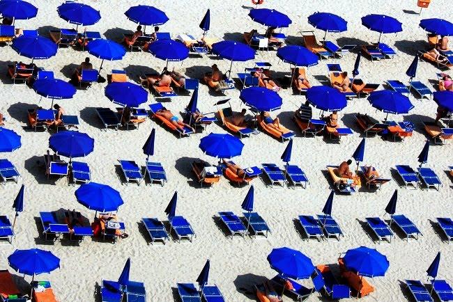 fot. Jonny Clow / unsplash.com CC0 1.0