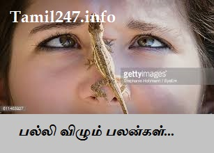palan, palli sollum palan by tamil, Superstitions on lizard falling, palli palan in panchangam in tamil 2016, 2017, 2018, 2019, 2020