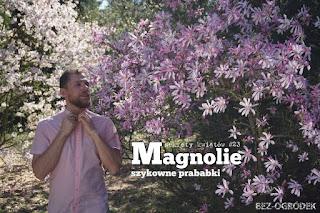 łukasz skop magnolie