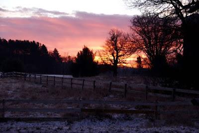 pink sky at morning... ?