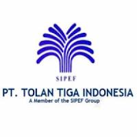 tolan tiga indonesia