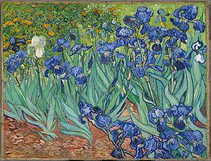 """""""Irises"""", Vincent van Gogh"""