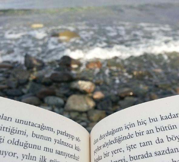 Uzunharmanlar'da Bir Davetsiz Misafir Konusu / Kitap Yorumları