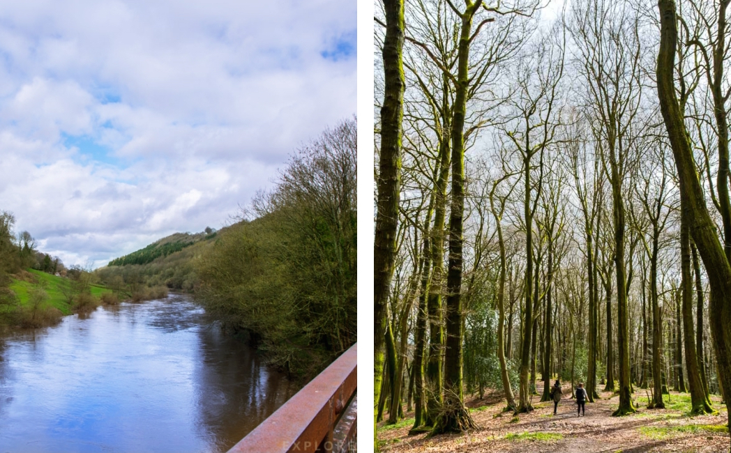 River Wye, Whitestone Woodland Park, Bluebell fields in Monmouthshire