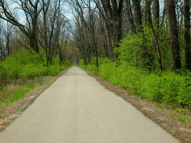 Dearborn Trail - Wooded Area and Wetland