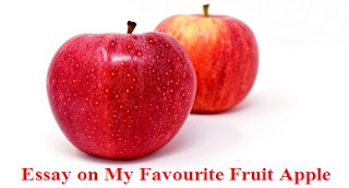 Essay on My Favourite Fruit Apple