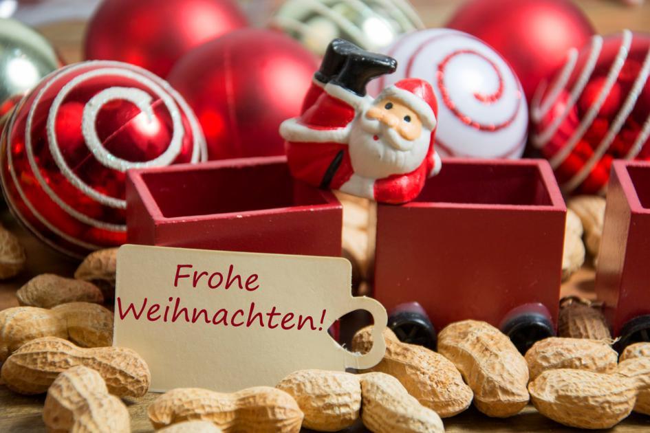 Hartz IV-Rezepte und bezahlbare Gesundheitstipps: Frohe Weihnachten
