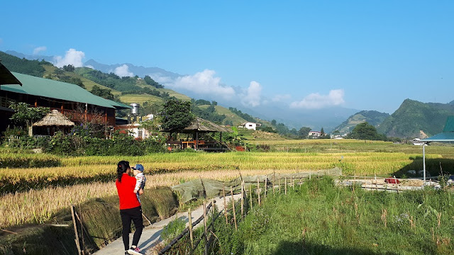What is the best Sapa Homestay Tour?