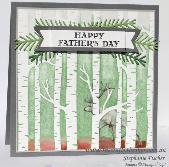 Stampin Up Australia, #thecraftythinker, Woodland, Stamping with an embossing folder, In the Meadow, Stampin Up Australia Demonstrator
