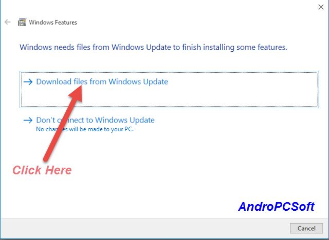 Use this option to Download Window Features from Internet