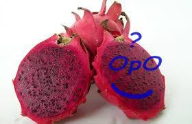 Opo - Manfaat buah naga merah untuk kesehatan