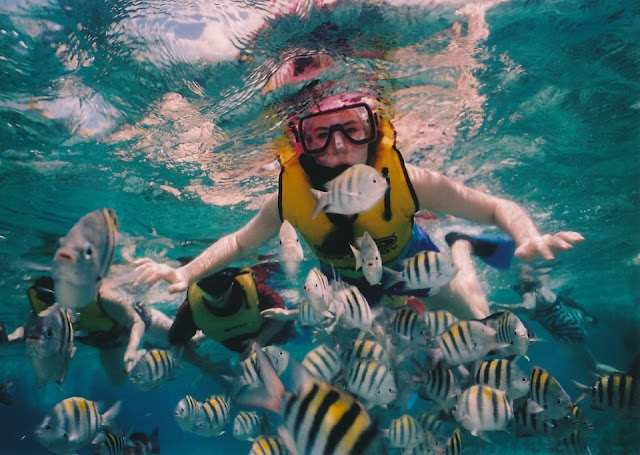 Things to Do in Zambales snorkel