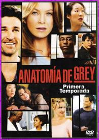 Anatomía de Grey Temporada 1 al 14 | DVDRip Latino HD Mega