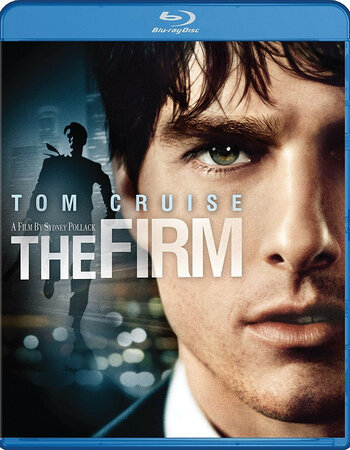 The Firm (1993) Dual Audio Hindi 480p BluRay x264 500MB ESubs Movie Download