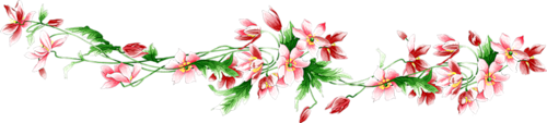 разделители для текста, разделители, для веб-дизайна, для сайтов, для блога, оформление текста, для оформления, для текста, для интернета, для страниц, украшения графические, дизайн графический, декор, декор для постов, декор для сайта, картинки, картинки для сайта, цветы, разделители с цветами, растения, разделители с растениями, лилии, нарциссы, сирень, розы, ромашки,