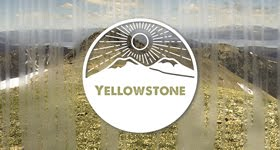 Join my Yellowstone group