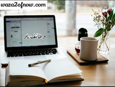 وظائف شاغرة حصرية للمحاسبين اليوم في مصر 2018 | وظائف ناو