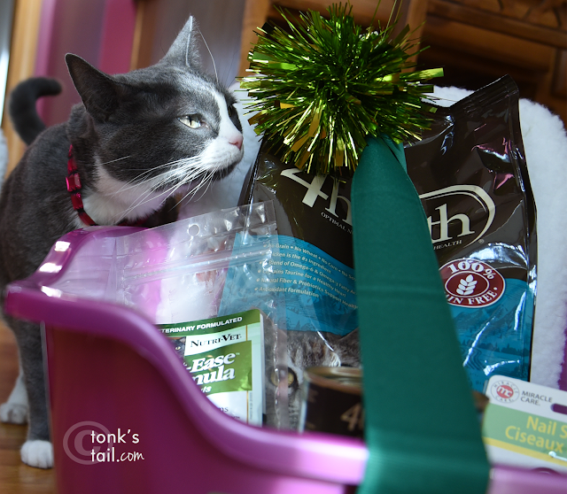 Allie gives the Wayside Waifs gift bundle her sniff of approval