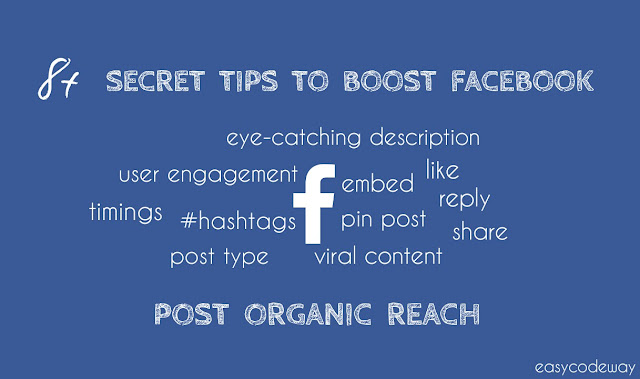 Tips to Improve Facebook Organic Reach