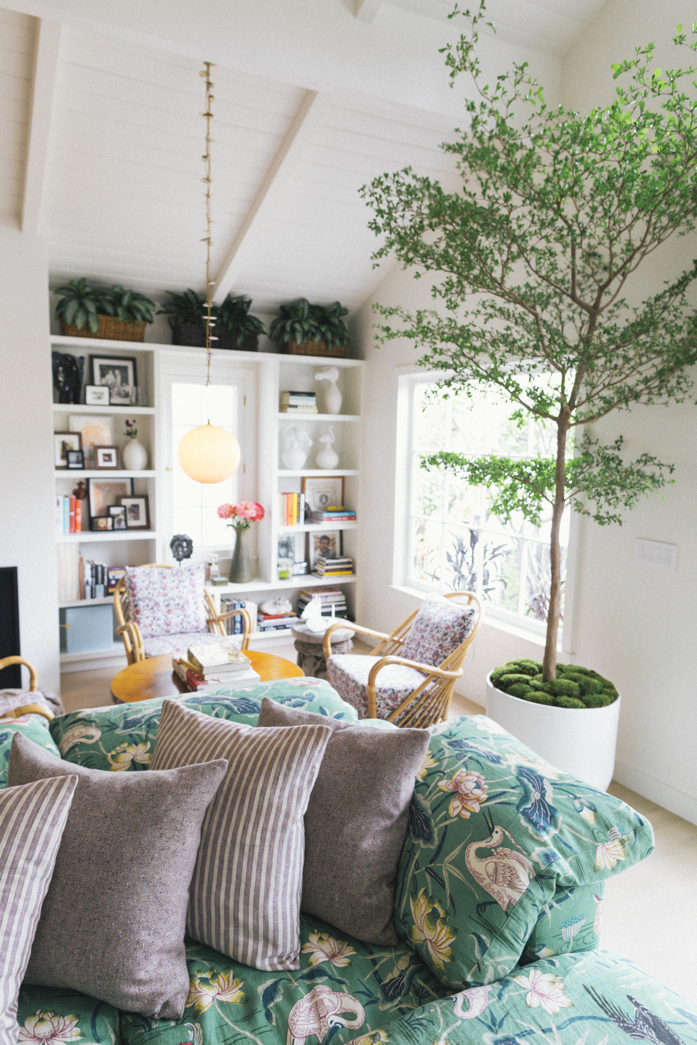 Make a statement with a large #plant- design addict mom