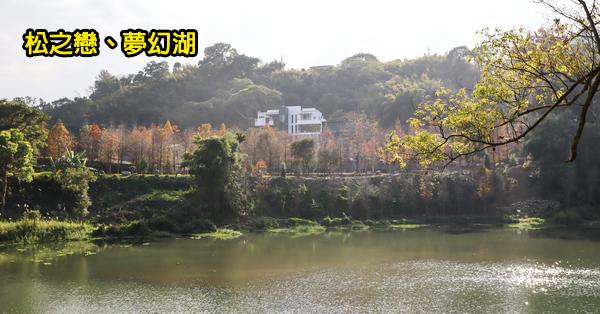 台中新社|松之戀|夢幻湖(雙翠湖)|白色玻璃屋和400棵落羽松依山傍水|新社秘境