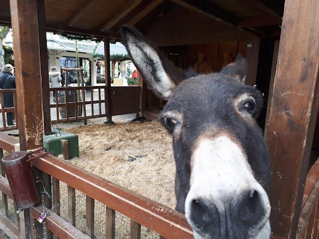 Christmas market donkey in Baden-Baden