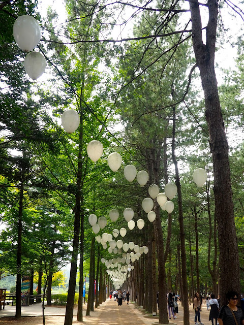 Tree lined path with white balloons on Namiseom Island, Gapyeong, South Korea