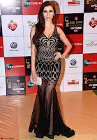 Claudia Ciesla in Transparent Black Designer Gown  Walk the Red Carpet of Zee Awards 2017i ~  Exclusive Galleries 033.jpg