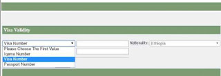 Check Visa validity with Visa Number
