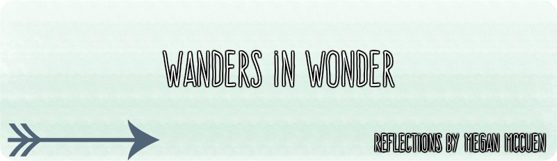 Wanders in Wonder