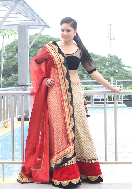 Tollywood Celebrities Nikesha Patel Photo Stills