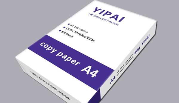 A3 Paper A4 Paper Size A5 Paper And A4 Copy Paper Wall