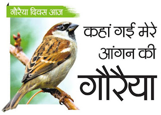World sparrows day full details