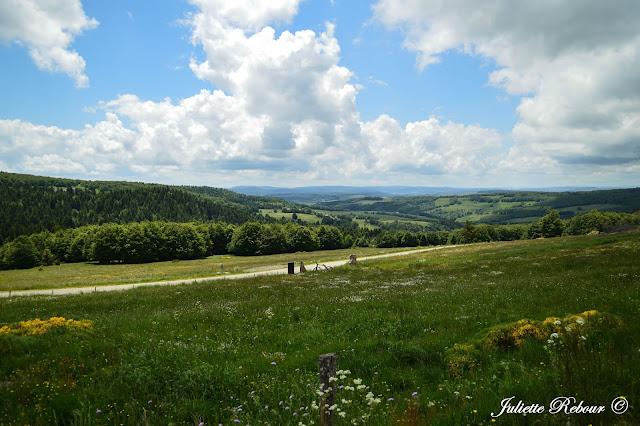 Ardèche, le pays de la châtaigne