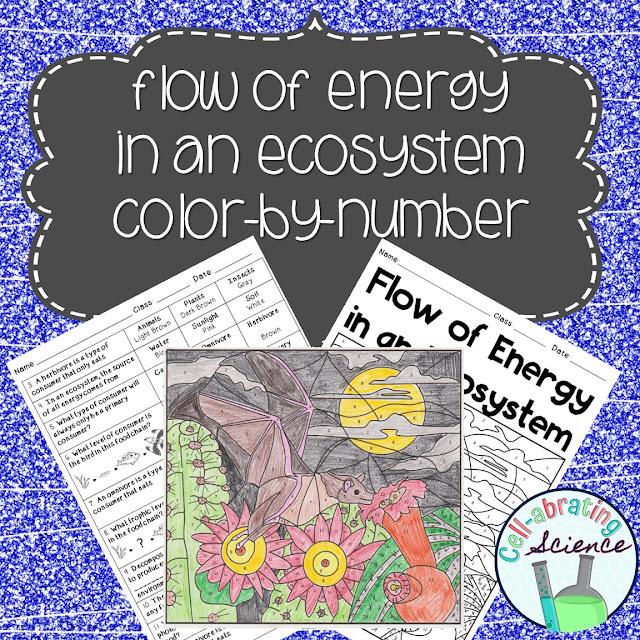 science color by numbers worksheet questions science best free printable worksheets. Black Bedroom Furniture Sets. Home Design Ideas