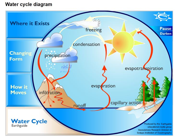 labeled water cycle diagram the homeschool voyager: the water cycle: facts, poetry ...