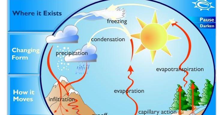 water cycle diagram earthguide the homeschool voyager the water cycle facts poetry