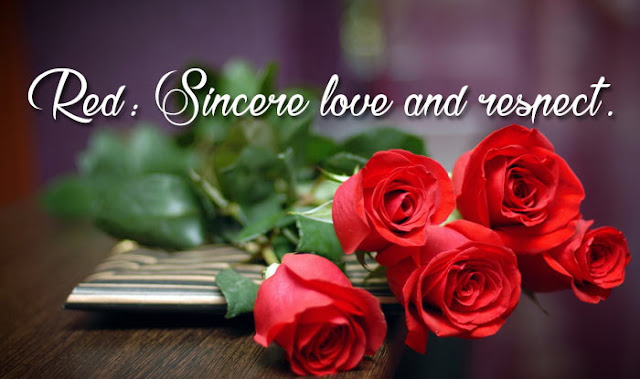 Rose Day Messages in Hindi