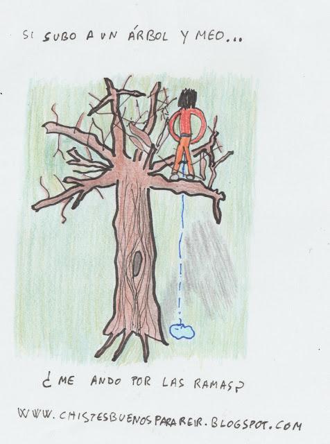 si subo a un árbol y meo, ¿me ando por las ramas?
