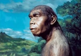 13 Jenis Manusia Purba dan Gambarnya Lengkap Dengan Penjelasan