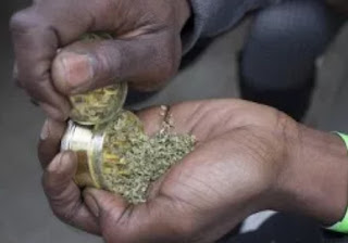 selling indian hemp kirikiri inmates