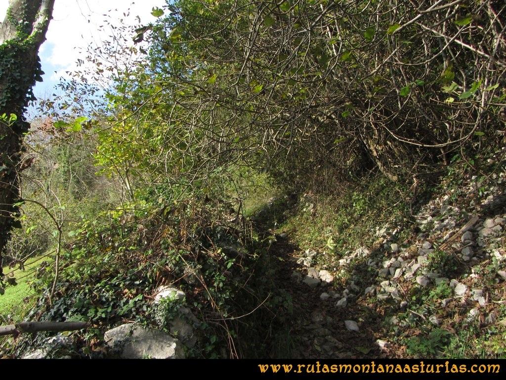 Ruta Baiña, Magarrón, Bustiello, Castiello. Entrada en el sendero