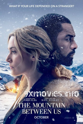 The Mountain Between Us 2017 Dual Audio Hindi Bluray Movie Download