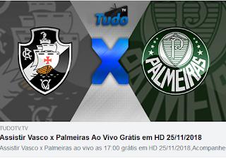 Assistir Vasco x Palmeiras Ao Vivo Grátis em HD 25/11/2018 (Tv Tudo)
