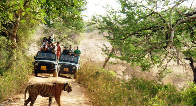 """Nainital - Almora - Munsiyari - Kausani - Jim Corbett National Park (8Days)    Day1 : Delhi - Nainital  Morning upon arrival at Railway station / Airport or your desired location. you will picked up by our representative. """"Welcome"""" and transfer to Nainital by road. Upon arrival at Nainital check into your pre-booked Hotel, After refreshing yourself at the hotel in Nainital,go on a sightseeing tour,beginning with boating on the famous Naini Lake (at your own cost) and visit to the holy Naina Devi Temple.After that, visit famous tourist spots like Naina Peak,Snow View and lands Etc.In the evening,enjoy shopping at the Mall road.Dinner and stay at the hotel.    Day2 : Nainital -  Lake Tour  After breakfast drive for lake tour of Bhimtal,Sattal,Naukuchiatal.Drive back to Hotel,Dinner (own cost)& overnight stay at Hotel.    Day3 : Nainital - Almora   After breakfast check out from hotel and depart to Almora.Check in to the hotel,After refreshing yourself at the hotel in Almora & visit to Temples in the evening return to hotel & stay at hotel.    Day4 : Almora - Munsiyari  After breakfast check out from hotel and depart to Munsiyari.Check in to the hotel,After refreshing yourself at the hotel in Munsiyari & visit to Temples,Water Fall,Khaliya Top Mountain Etc. in the evening return to hotel &stay at hotel.     Day5 : Munsiyari - Kausani  After breakfast check out from hotel and depart to Kausani.Check in to the hotel,After refreshing yourself at the hotel in evening free for leisure, Overnight stay at the Hotel.     Day6 : Kausani – Local Sightseeing  Morning after breakfast day visit to Bageshwar upon arrival visit Bagnath Temple, The temple was built in 1450 by Kumaon ruler, Laxmi Chand, at the confluence of Gomati and Sarayu Rivers. En-route also visit the Baijnath Temple which is located on the bank of River Gomti &  Visit to Rudhdhrai water fall.evening back to Hotel for overnight stay.    Day7 : Kausani – Jim Corbett  After breakfast check out from hotel and depart """