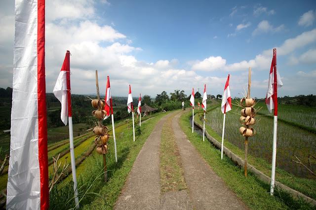 Entrée des rizières à Jatiluwih
