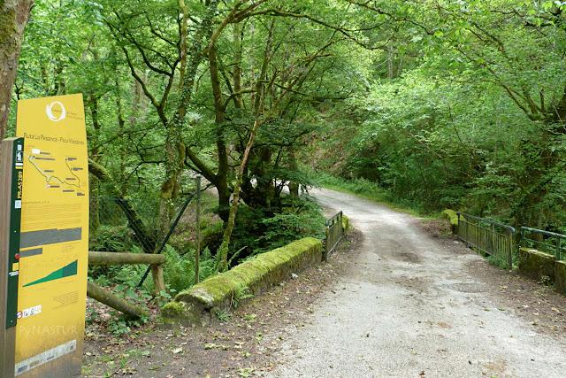Puente sobre el Río Infierno - La Pesanca