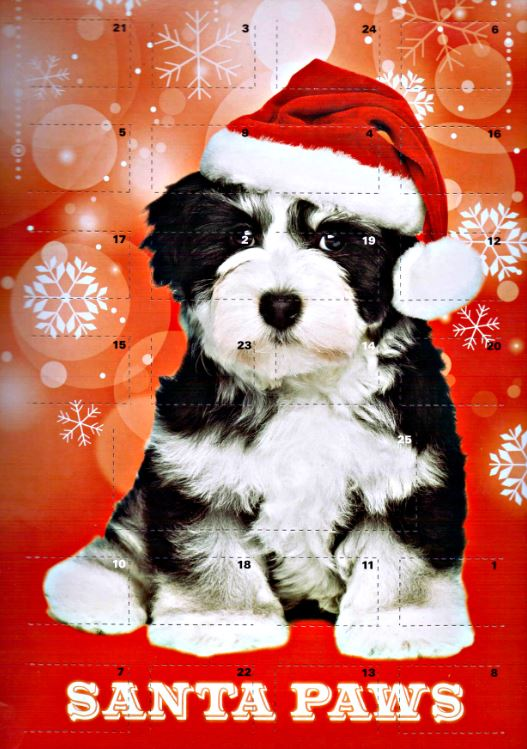 Santa Paws Advent Calendar For Furbabies