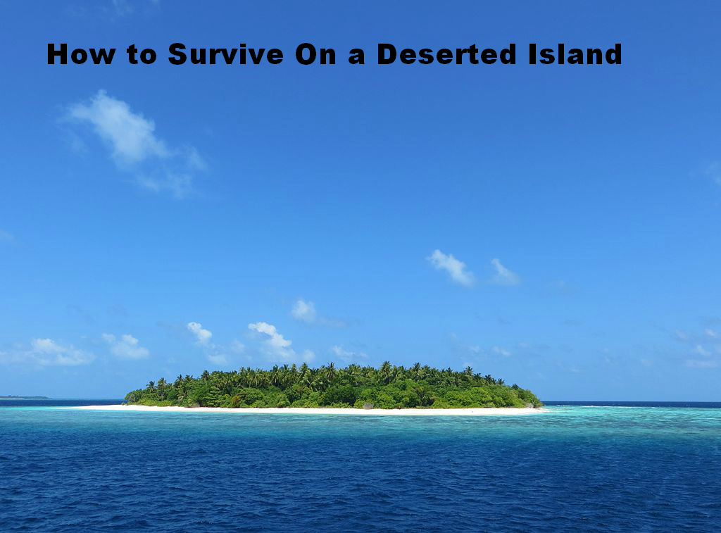 3 things to survive with in a deserted island How to survive on a deserted island with nothing although many people travel by plane and boat without incident, accidents can happen if your boat or plane fails at sea, you and your fellow passengers may have.